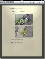 110601_flower