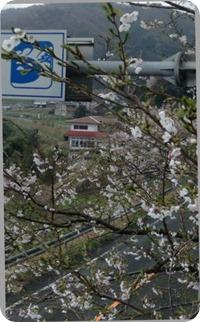 2013-04-03 15.13.16